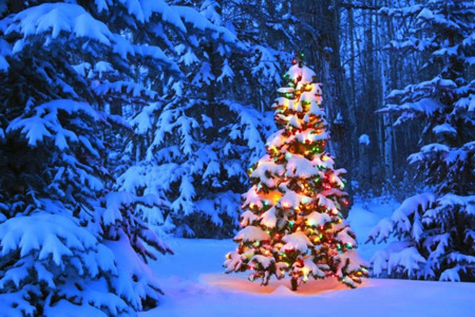 will rochester have a white christmas this year - Will It Be A White Christmas